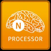 NEURONprocessor